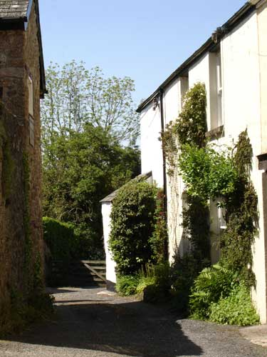 little lane in Chagford