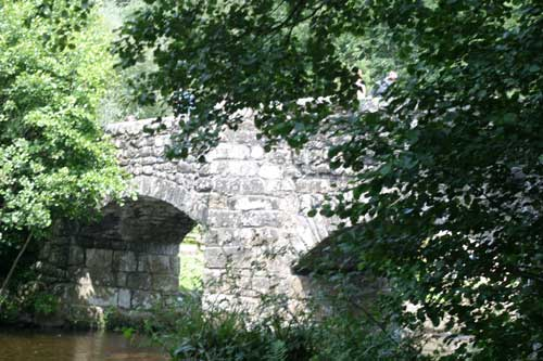 Fingle bridge