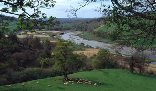 River Dart near Ashprington