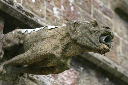 gargoyle on Winkleigh church