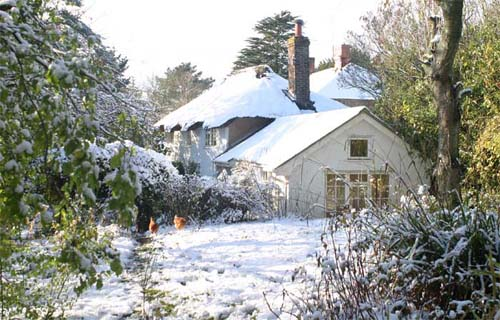 Gooseberry Cottage in the snow